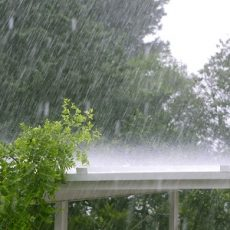 Raining over a white roof in a hurricane storm, trees in background