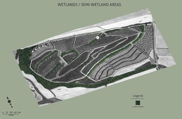 zones_wetlands07