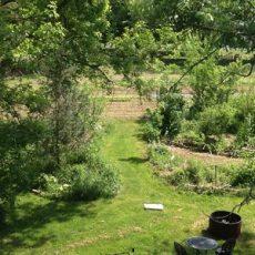 farming-the-garden-00